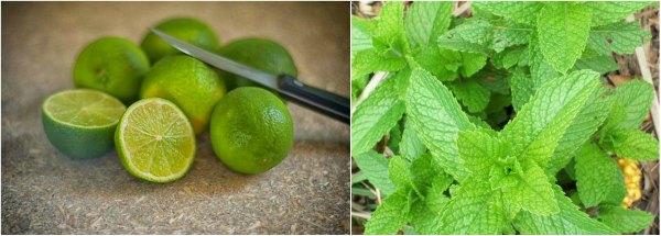 Homemade beauty tips for fairness mint lemon