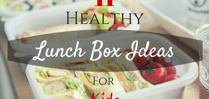 11 Healthy Lunch Box Ideas For Kids